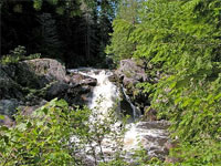 photo of salmon trout river near mine site